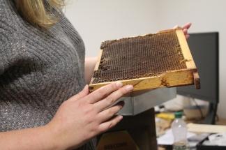 Replica Hive